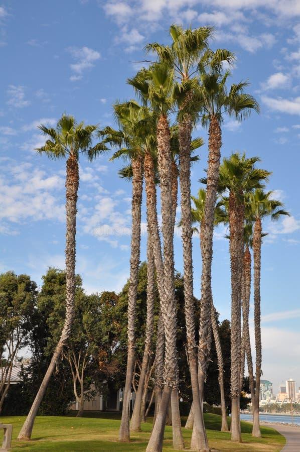 Coronado Island in San Diego, California royalty free stock photography