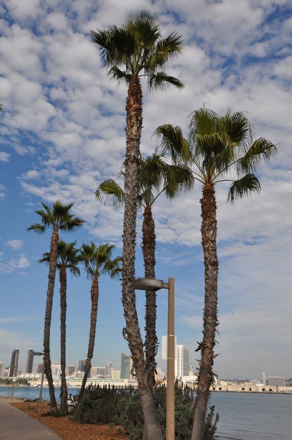 Coronado Island in San Diego, California stock image