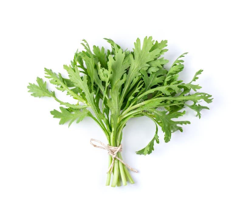 Coronarium de chrysanth?me sur le fond blanc. Vue sup?rieure image stock