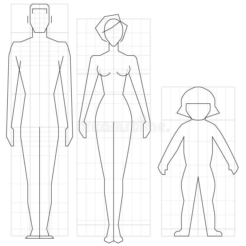 Corpo ilustração do vetor