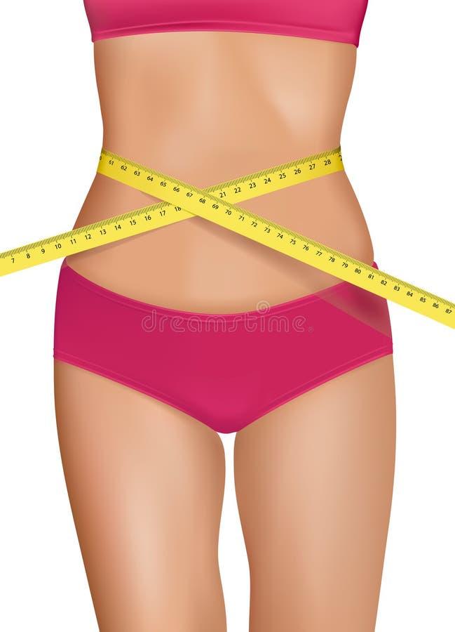 Corpo apto da mulher nova com cintura medida. ilustração stock
