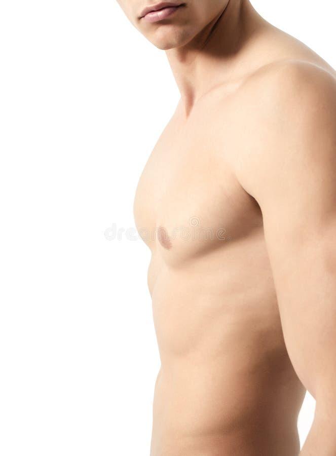 Corpo da aptidão imagens de stock