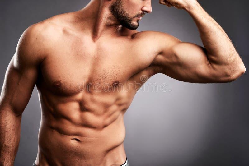 Corpo de um desportista novo imagens de stock