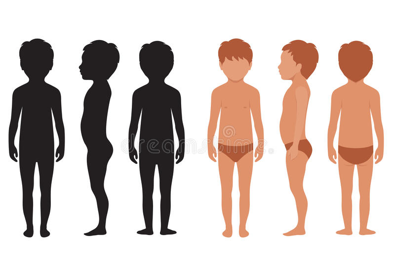 Corpo del bambino, anatomia umana, illustrazione di stock