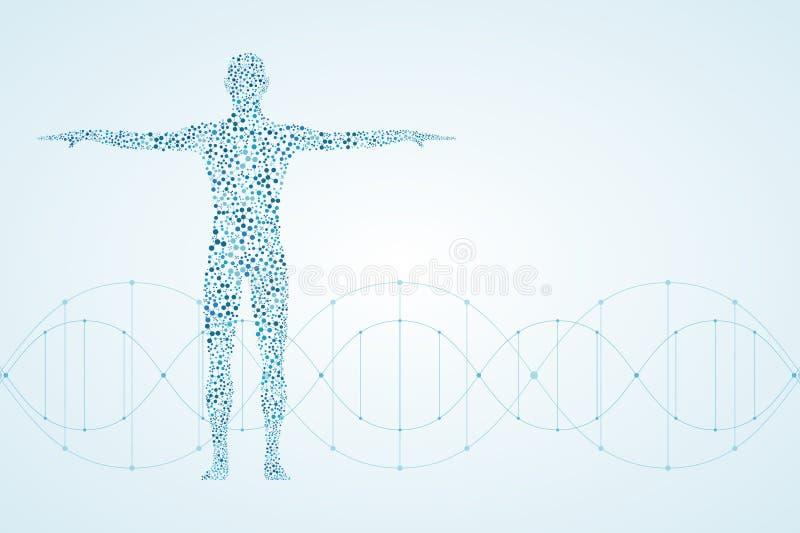 Corpo humano abstrato com ADN das moléculas Medicina, ciência e conceito da tecnologia Ilustração ilustração stock