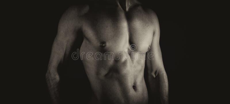 Corpo masculino muscular irreconhecível fotografia de stock royalty free