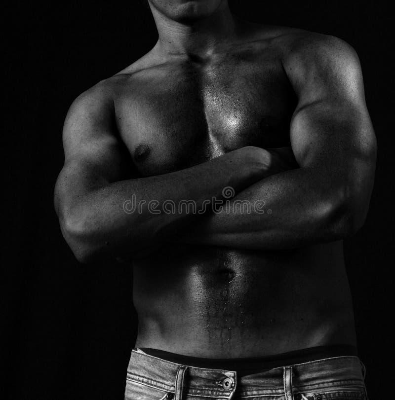 Corpo masculino muscular preto fotografia de stock royalty free