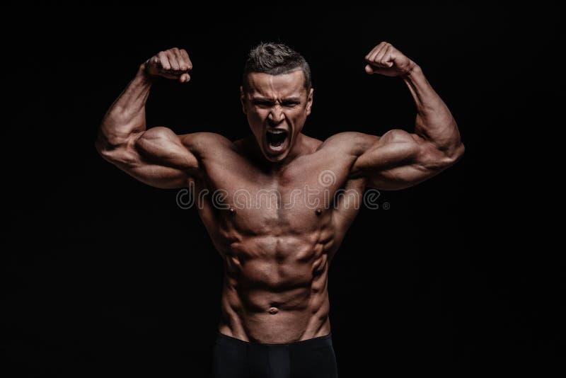 Corpo muscular imagens de stock royalty free