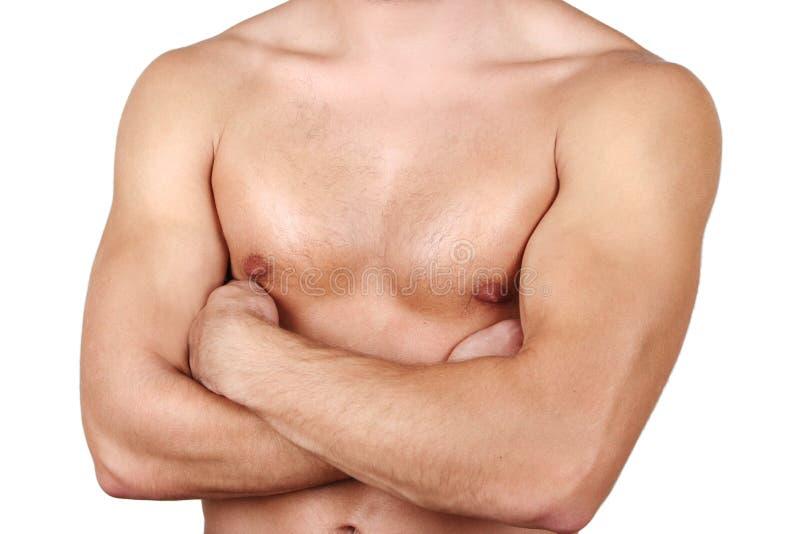 Corpo saudável imagens de stock