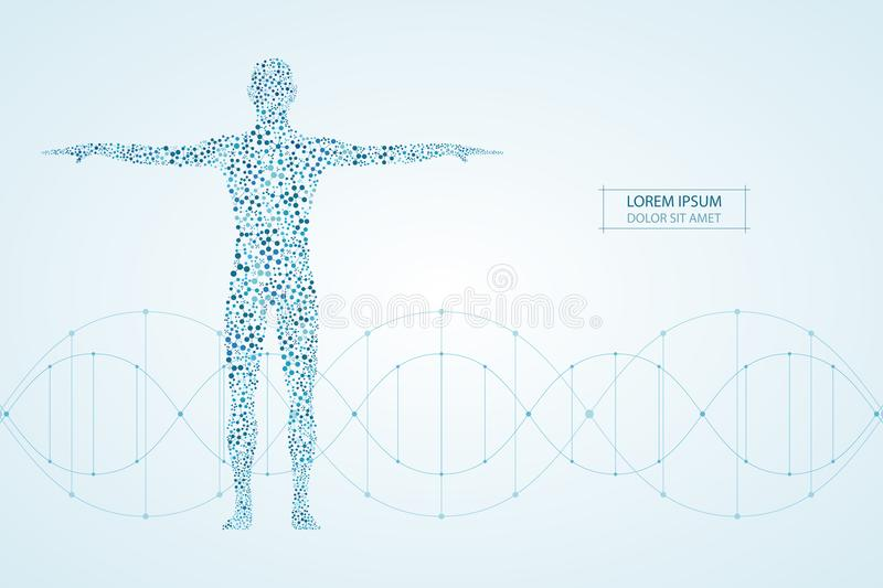 Corpo umano astratto con il DNA delle molecole Medicina, concetto di scienza e tecnologia Illustrazione di vettore illustrazione di stock