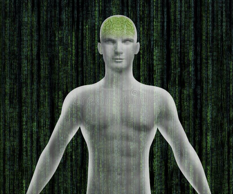 Corpo umano con il cervello digitale illustrazione vettoriale