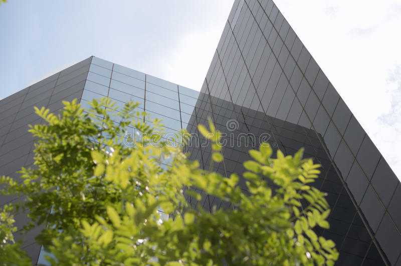 Corpoate budynki i zieleń liście zdjęcia stock