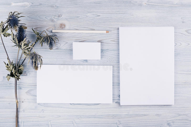 Corporate identity template, stationery with dry flower on soft light blue wooden board. Mock up for branding, graphic designers p. Resentations, portfolios royalty free stock photo
