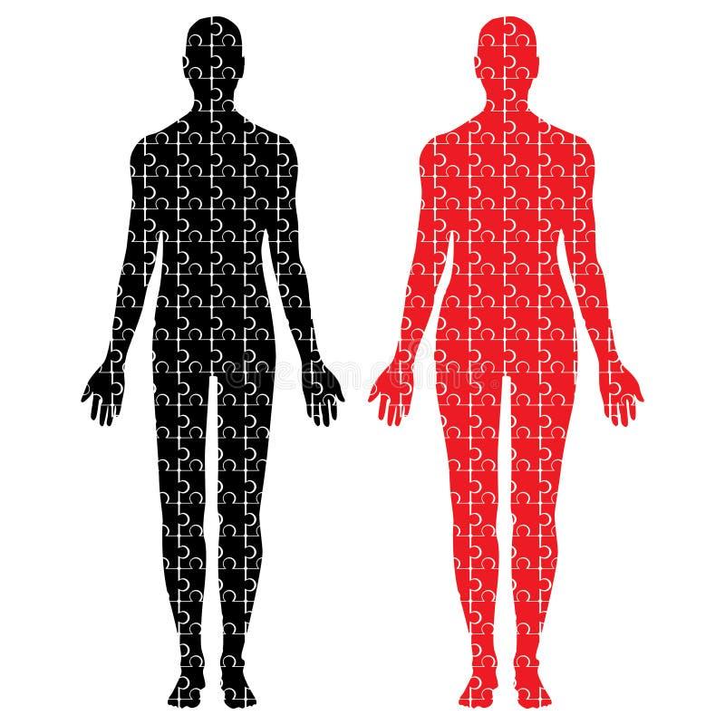 Corpos masculinos e fêmeas do enigma ilustração stock