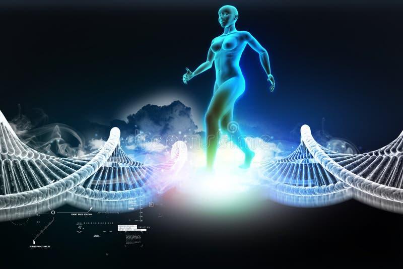 Corps humain féminin de femme avec de l'ADN illustration stock