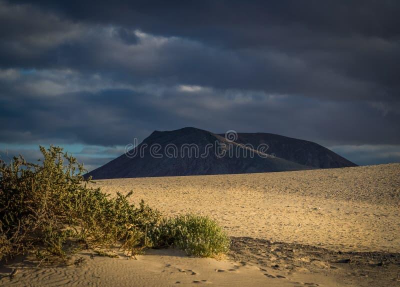 Corralejo沙丘国家公园 免版税库存图片