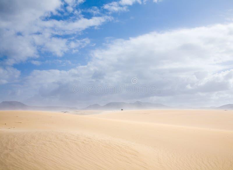 corralejo diuny Fuerteventura zdjęcia royalty free
