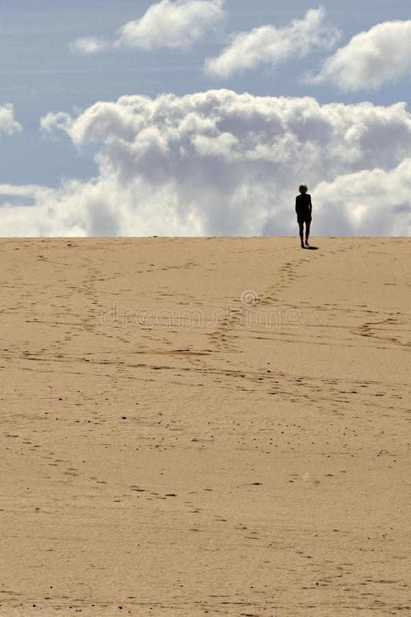Download Corralejo Dunes stock image. Image of alone, single, sandy - 83643215