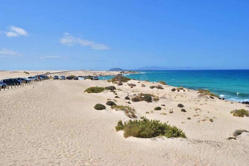 Corralejo dyn, Fuerteventura, kanariefågelöar arkivbilder