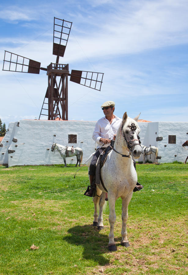 CORRALEJO, SPAIN - APRIL 28: Horse show. CORRALEJO, SPAIN - APRIL 28: Horses are on show as a part of April celebration on 28 April 2012 in Corralejo stock images