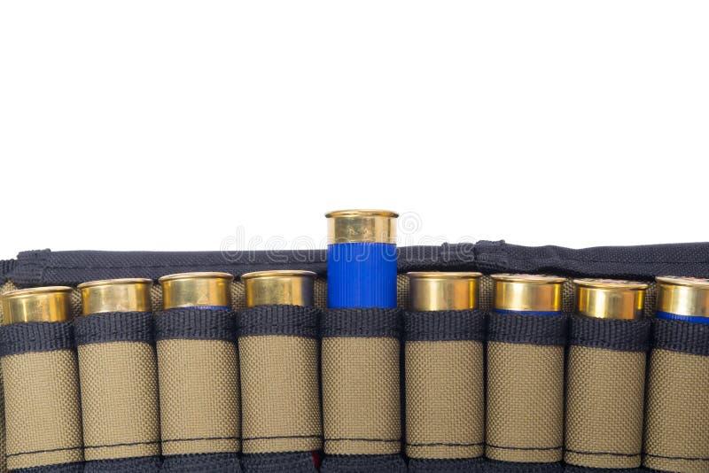 correa de cartucho con la munición azul, en el fondo blanco foto de archivo