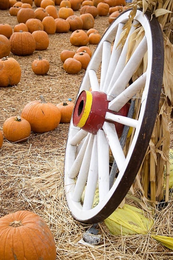 Corrección de la calabaza de la rueda de carro