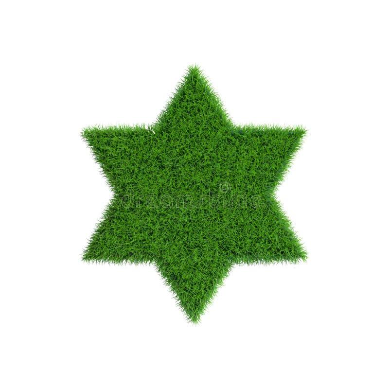 Correction d'herbe sous la forme d'étoile six-aiguë illustration stock
