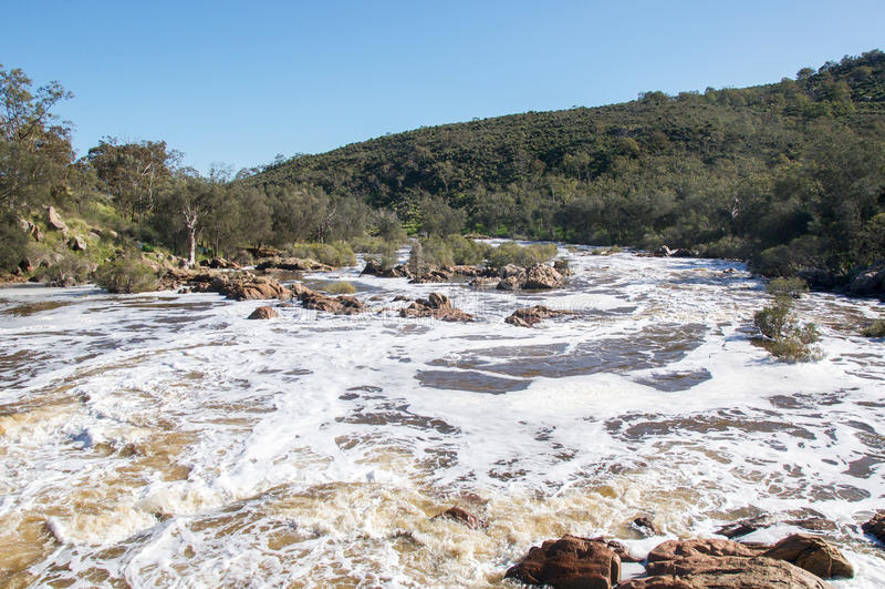 Corredeira de Bell: Vale da cisne, Austrália Ocidental fotos de stock royalty free