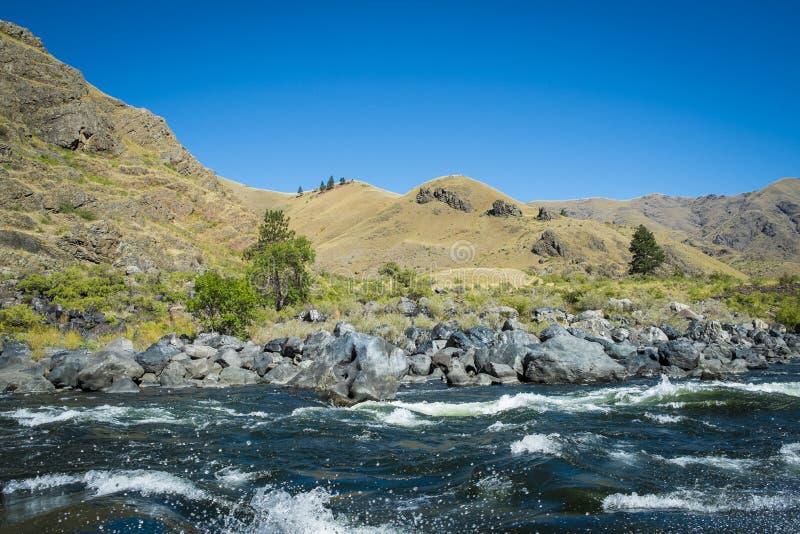 Corredeira de Whitewater na garganta dos infernos, Idaho imagens de stock