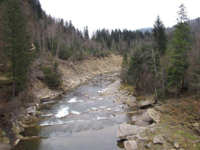 Corredeira pisada de um rio da montanha nos Carpathians foto de stock royalty free