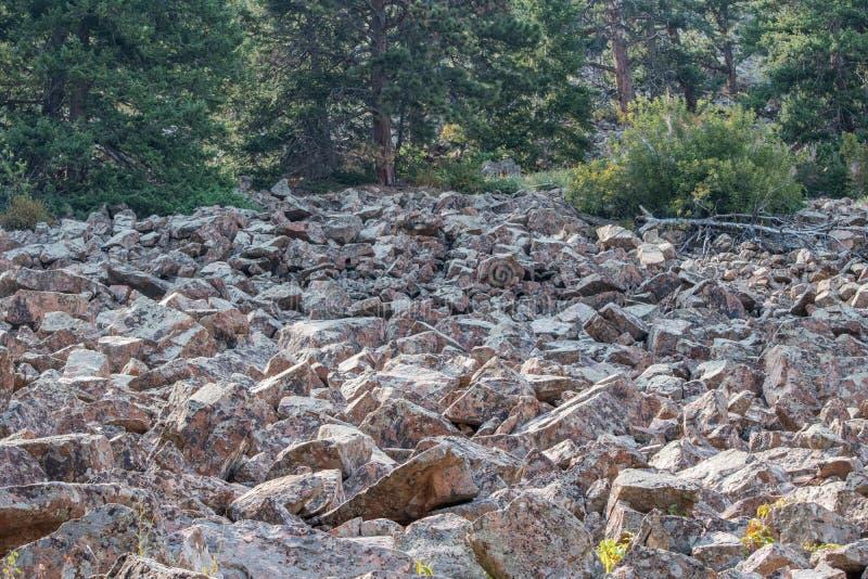 Corrediça da rocha imagens de stock