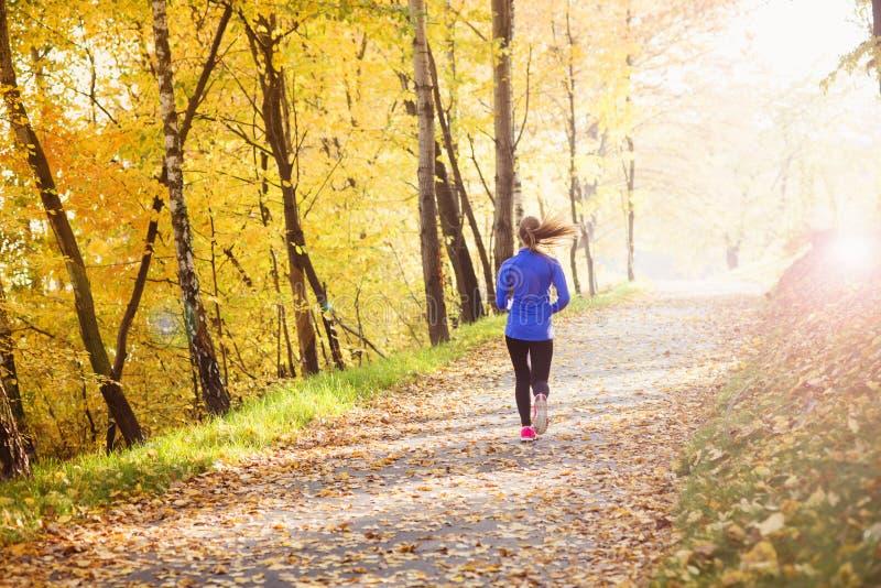 Corredor ativo e desportivo da mulher na natureza do outono fotos de stock