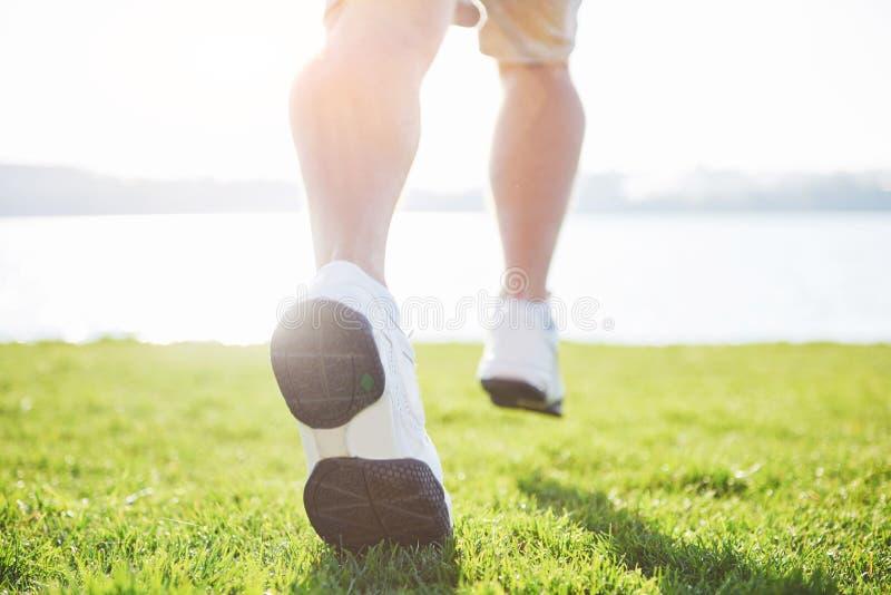 Corredor através dos campos exterior no conceito da luz do sol do verão para o exercício, a aptidão e o estilo de vida saudável F foto de stock royalty free