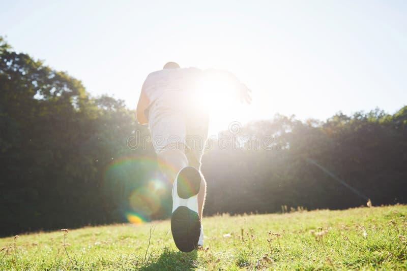 Corredor através dos campos exterior no conceito da luz do sol do verão para o exercício, a aptidão e o estilo de vida saudável F foto de stock