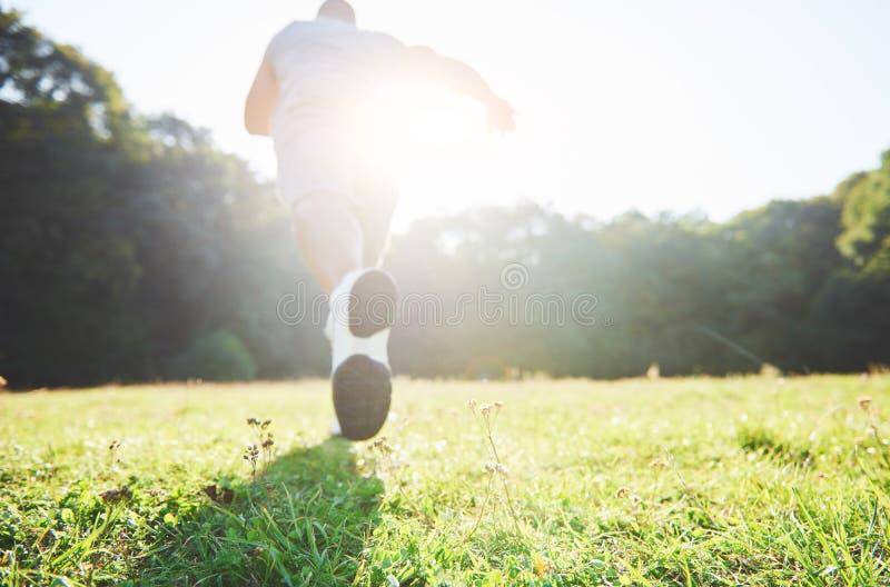 Corredor através dos campos exterior no conceito da luz do sol do verão para o exercício, a aptidão e o estilo de vida saudável F imagem de stock royalty free