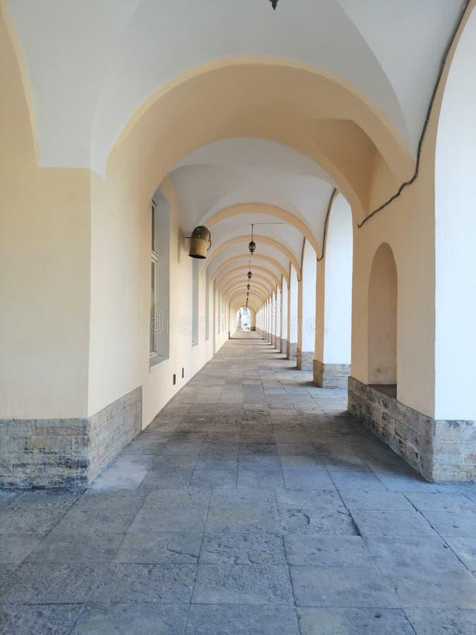 Corredor com arcos e luzes da biblioteca foto de stock