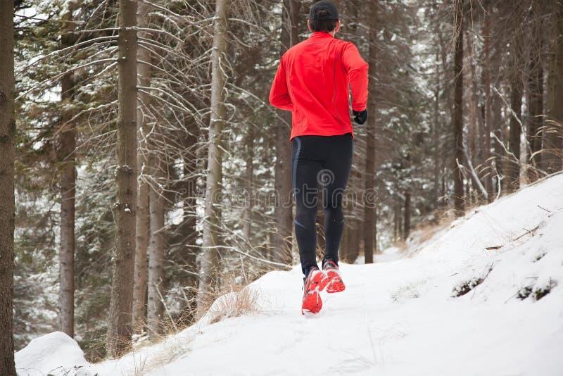 Corredor da fuga do inverno foto de stock royalty free