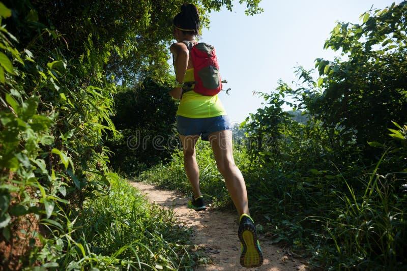 corredor da fuga da mulher que corre na floresta ensolarada imagem de stock