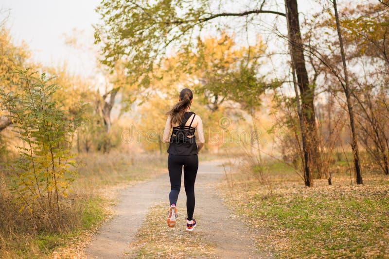 Corredor da mulher no conceito saudável da floresta da queda do outono foto de stock