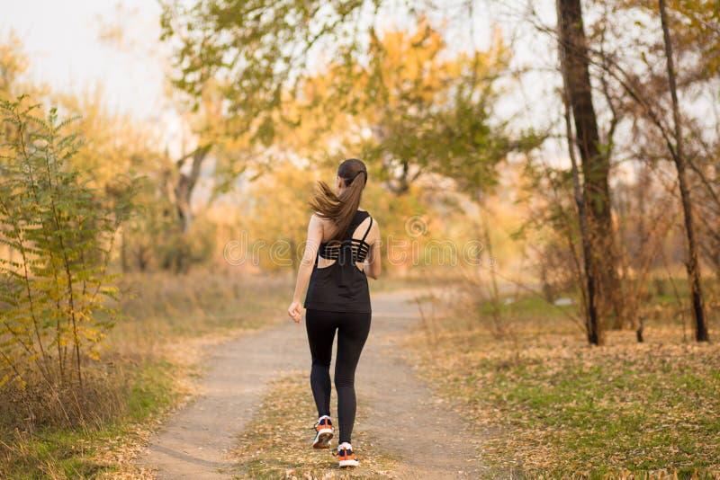 Corredor da mulher no estilo de vida saudável da floresta da queda do outono imagens de stock