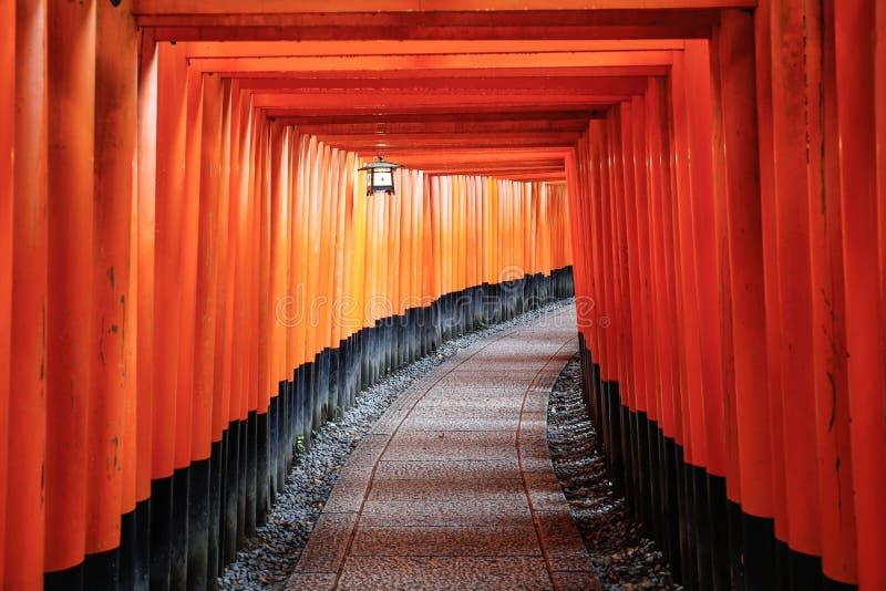 Corredor de Fushimi Inari fotografia de stock