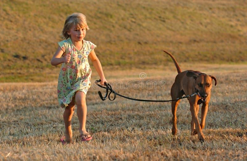 Corredor do divertimento do Doggy