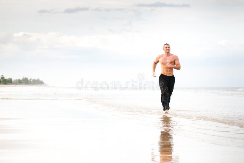 Corredor muscular considerável novo do homem fotografia de stock royalty free