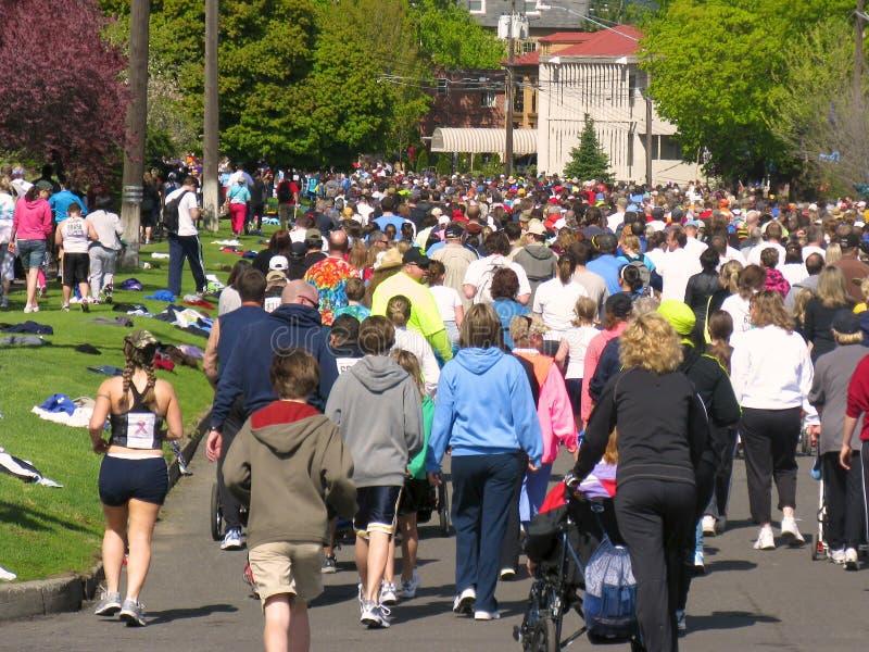 Corredores 2010 de Spokane Bloomsday imagen de archivo