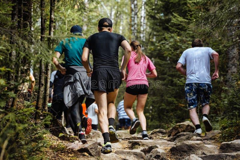 Corredores de maratona traseiros do grupo da vista grandes fotos de stock royalty free