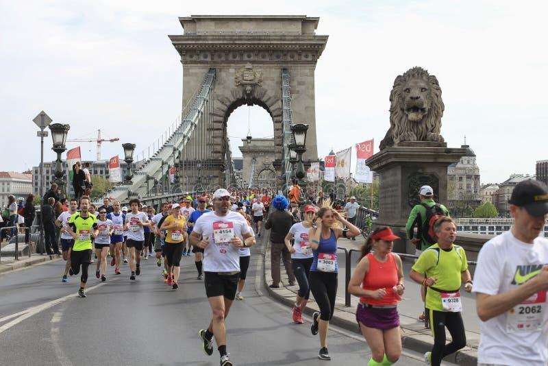 Corredores en Chine Bridhe en Budapest, Hungría, maratón 17 de abril de 2016 imágenes de archivo libres de regalías
