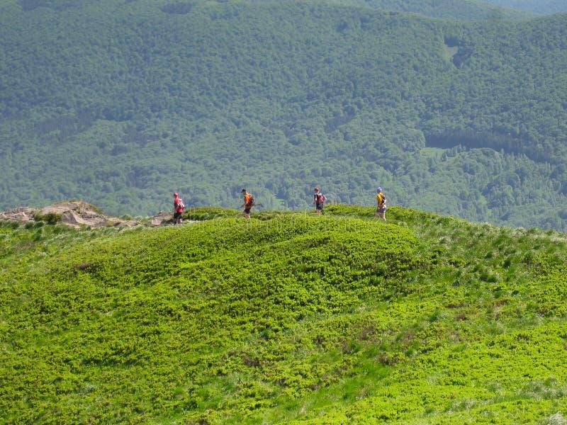 Corredores un rastro de montaña fotografía de archivo libre de regalías