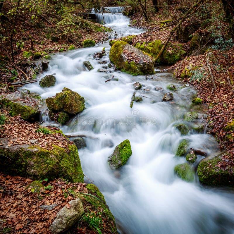 Corrente in autunno fotografie stock libere da diritti