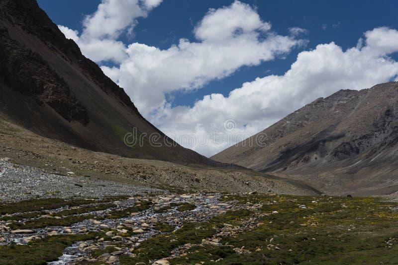 Corrente che attraversa il paesaggio di Ladakh, India, Asia immagine stock