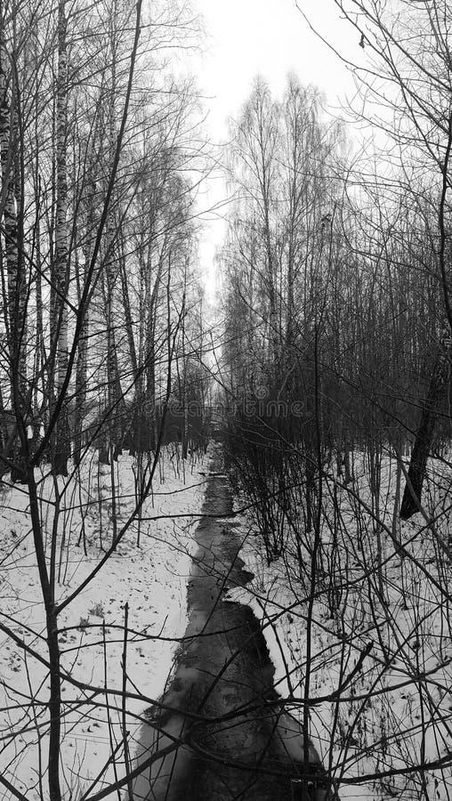 Corrente congelata fotografie stock
